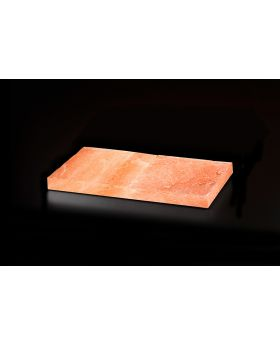 Dry Ager Salzblock für DX500